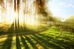 Рабаш: выход праведника оставляет след