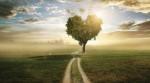 Рабаш о важности веры. Часть вторая