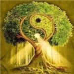 Хаим Виталь о сути пророчества. Часть пятая